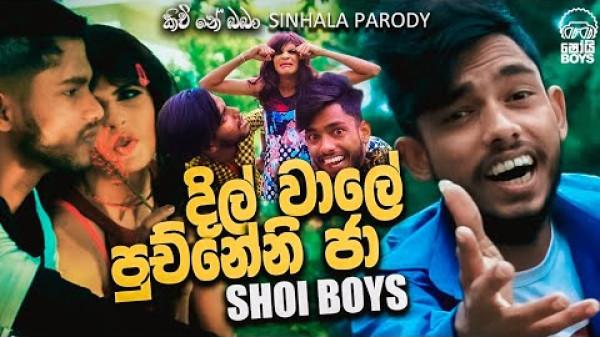 Shoi Boys - දිල් වාලේ පුච්නේනි ජා | Kichi Ne Baba | Parody Song